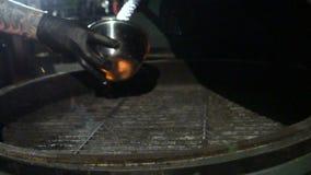烹调在格栅的淡菜 影视素材