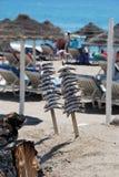 烹调在海滩酒吧,丰希罗拉的沙丁鱼 免版税库存图片