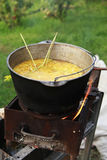 烹调在火的晚餐在庭院里 免版税库存图片