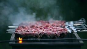 烹调在火的鲜美肉 影视素材