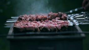 烹调在火的鲜美肉 股票录像