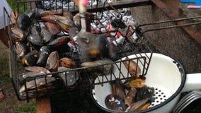烹调在火盆的淡菜 股票录像