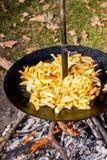 烹调在烘烤器的土豆在 picnic_期间的森林 库存图片