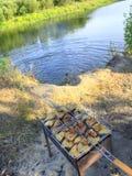 从烹调在自然的母鸡的肉的烤肉 免版税库存图片