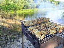 从烹调在自然的母鸡的肉的烤肉 库存照片