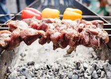 烹调在金属串的烤kebab 烤肉被烹调在烤肉 用红色和黄色喇叭花胡椒 库存图片