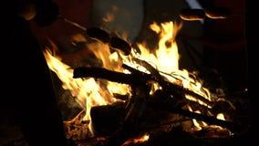 烹调在阵营火在森林里,野火的风险的人们香肠,慢动作 股票录像