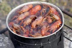 烹调小龙虾 免版税库存照片