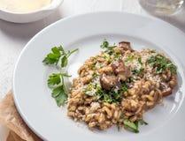 烹调意大利语的食品成分 意大利煨饭用蘑菇和乳酪在一块白色板材在白色背景 库存照片
