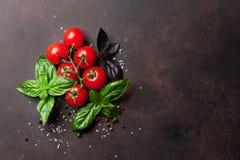 烹调意大利语的食品成分 蕃茄和蓬蒿 免版税库存图片