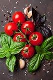 烹调意大利语的食品成分 蕃茄和蓬蒿 图库摄影