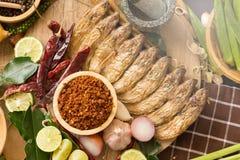 烹调成份的泰国食物的分类 加香料成份 免版税库存照片