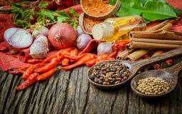 烹调成份的泰国食物 库存图片