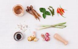 烹调成份的泰国食物 免版税库存照片
