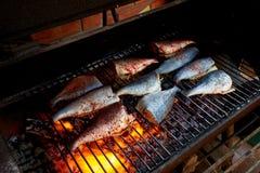 烹调新鲜的鳟鱼和海鲷在bbq 免版税库存图片