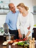 烹调汤的年长夫妇 库存照片