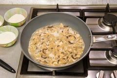 烹调沙拉酱肉小汤 免版税库存图片