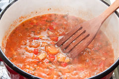 烹调炖煮的食物的蔬菜 库存图片