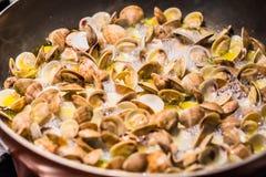 烹调烹调意大利人平底锅的蛤蜊 免版税库存图片