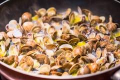 烹调烹调意大利人平底锅的蛤蜊 免版税库存照片