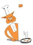 烹调煎蛋的厨师猫 免版税库存图片
