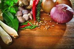 烹调的原始的东部食物s泰国厨房食物香料草本 库存照片