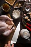 烹调的鸡咖喱成份在桌上 印第安食物 免版税图库摄影