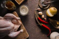 烹调的鸡咖喱成份在桌拷贝空间 印第安食物 免版税图库摄影