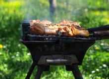 烹调肉的烤肉 免版税库存照片