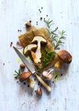 烹调背景的秋天;有机porcini蘑菇;晒干 库存照片