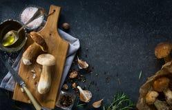 烹调背景的秋天;有机porcini蘑菇 免版税图库摄影