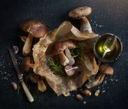 烹调背景的秋天;有机porcini蘑菇 图库摄影
