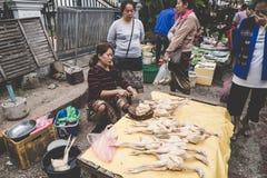 烹调食物和出售食物的一名地方老挝小山部落妇女在每日早晨市场上在琅勃拉邦,第13个NOVEMB的老挝 库存图片