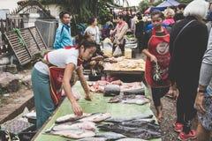 烹调食物和出售食物的一名地方老挝小山部落妇女在每日早晨市场上在琅勃拉邦,第13个NOVEMB的老挝 库存照片