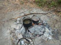 烹调食物在露营地深在森林内 免版税库存照片