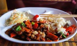 烹调食物日本国民 免版税库存图片