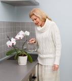 烹调食物的妇女在厨房 免版税库存照片