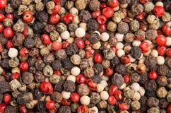 烹调香料差异干小的干胡椒 免版税库存图片