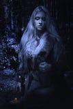 烹调魔药的斯堪的纳维亚巫婆女巫 免版税库存照片