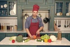 烹调,烹饪,菜单,盘,食谱 库存照片