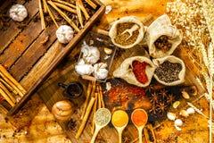 烹饪调味料&草本,热的红色辣椒,白胡椒,在匙子的干辣椒粉,大蒜,在大袋, ci的香料顶视图  免版税库存照片