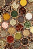 烹饪香料和草本调味料 免版税库存图片