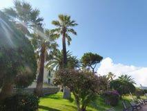 焦约萨马雷亚风景西西里岛的 免版税库存照片