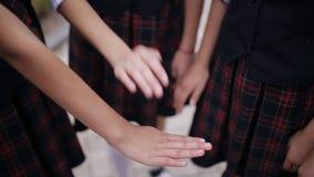 然后被培养逐个一起胳膊的女小学生在团结和配合  聚会许多女小学生的手  股票录像