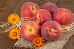 仍然新鲜的生活桃子 免版税库存照片