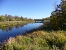 仍然河在草甸 图库摄影