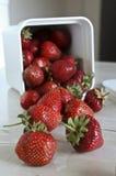 仍然生活草莓 库存照片