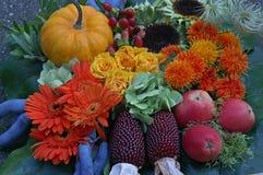 仍然秋天与从自己的庭院的产品 免版税图库摄影