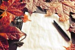 仍然秋天生活 与时钟和墨水笔的老被染黄的纸在秋天槭树附近离开 免版税库存图片