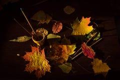 仍然秋天生活 叶子和刷子 免版税图库摄影